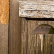 Vintage grungy letter box on wooden door — Stock Photo