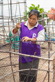 Woman fishermen is weaving fish-trap — Stock Photo