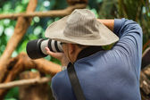 Photographer is taking a photograph animal — Stock Photo