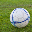 Soccer ball on green grass — Foto Stock