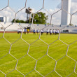 Stock Photo: Football net on green grass background