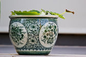Chinese antique pot — Stock Photo