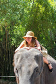 Tourist rides the elephant in a zoo — Stock Photo