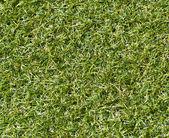 人工の圧延の緑の芝生 — ストック写真