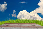 Wood textured backgrounds in room interior on the sky field bac — Stock Photo