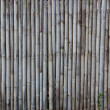 Bamboo fence — Stock Photo #37840927