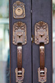 Door handles are made of steel. beautiful pattern. — 图库照片
