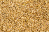 Dry straw background — Stock Photo