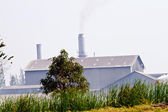 Smoke produced by the smokestacks of paper mill — Stock Photo