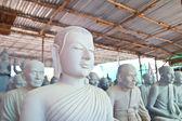Buddha respectable face — Foto Stock