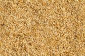 Dry straw background — Stock Photo