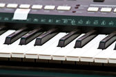 Close up of piano key, front view — Stock Photo