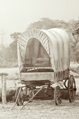 Wild West cart — Stock Photo