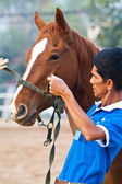 Man rider trains the horse in the riding course — Stock Photo