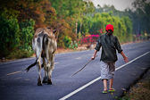Way of life Countryside in thailand — Stok fotoğraf