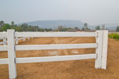 White fence in farm field and overcast sky — Stock Photo