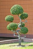 Trpaslík zahradní dekorace styl ve venkovní park — Stock fotografie