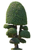 Dwarf of garden decoration style in outdoor park — Foto de Stock