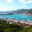 Cruise liners in harbor — Stock Photo #19503061