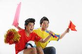 Male sports fans — Stockfoto
