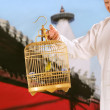 Stock Photo: Oriental senior mholding birdcage beside temple