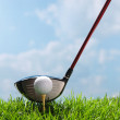 Golf club and ball — Stock Photo #37178829