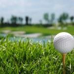 Golf ball on tee — Stock Photo #37180211