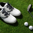 Stock Photo: Golf club,ball and shoes