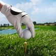 Placing golf ball on tee — Stock Photo #37188177