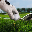 Placing golf ball on tee — Stock Photo #37188827