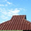 Red roof and cloudy sky — Stock Photo #26384637