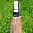 Close-up garden lamp on the background of green grass — Foto de Stock