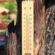 Stock Photo: Thermometer on wooden and high temperatures