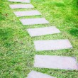 Stone walkway in the garden — Stock Photo
