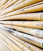 竹のフェンスのテクスチャ — ストック写真