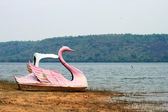 Swan pedal boat and river — Stock Photo
