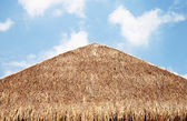 The thatched roof with blue sky — Stock Photo