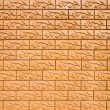 Brick wall and branch  texture  — Stock Photo