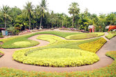 Tourist Attraction : A beautiful Butterfly Hill at Nong Nooch Tr — Stock Photo