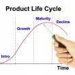 A pen pointer product life cycle chart — Stock Photo #26504417