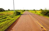 Un camino rural a través de verdes campos — Foto de Stock