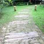 Wooden pathway — Stock Photo #26511115
