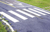Zebra way on the asphalt road surface — Stock Photo
