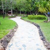 Väg genom en grön trädgård — Stockfoto