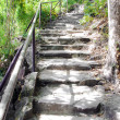 Stone stair at Pha Tam park, Thailand — Stock Photo