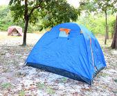 синий шатер на лес — Стоковое фото