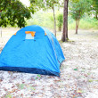 Blue tent on the forest — Stock Photo