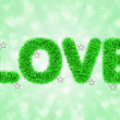 Text love with tinsel pattern — 图库照片