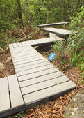 Wooden boardwalk in forest with walkway sign — 图库照片