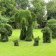 Stock Photo: Elephant tree in park